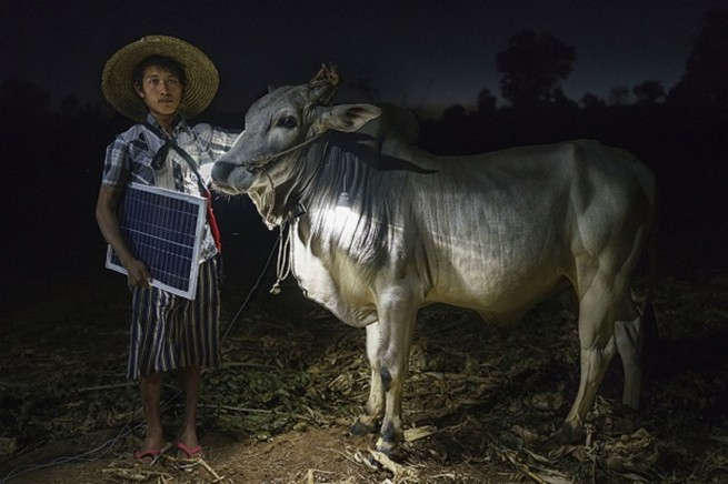 Mg Ko, 20 years old. A Shan farmer with his cow in Lui Pan Sone Village. Kayah State.  Sony is accepting entries to 2016 World Photography Awards 24