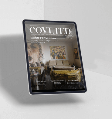 Download Coveted Nº18