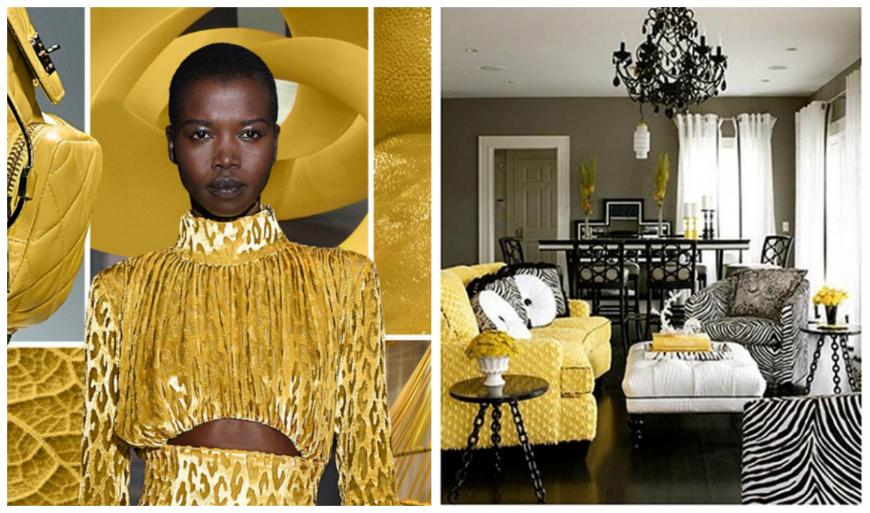 winter pantone 10 Inspiring Living Rooms Using Winter Pantone 10a
