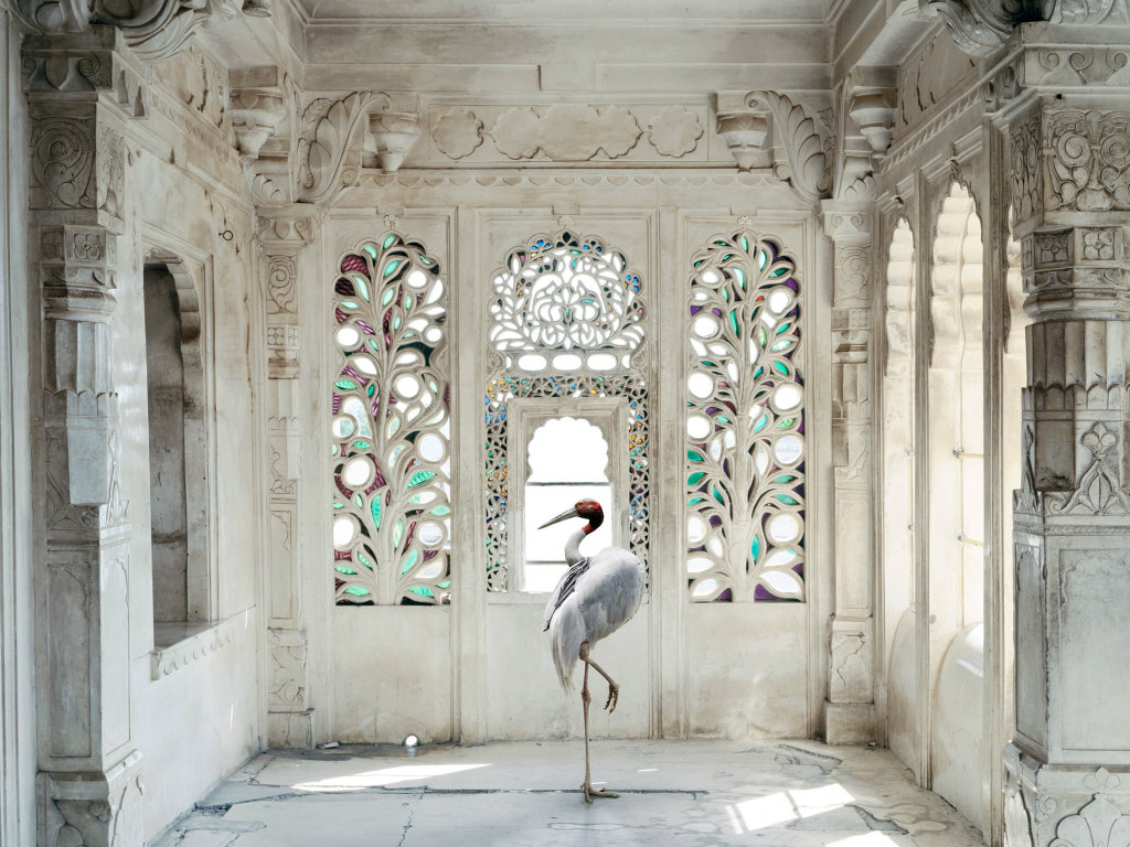 photography Karen Knorr's Enchanted Photography through Mystical India cover1