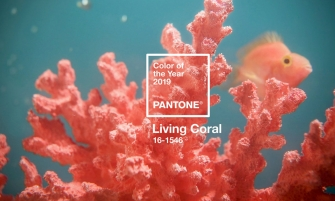 Pantone Color of the Year The Pantone Color of the Year 2019 Is Officially Released featured 2 335x201