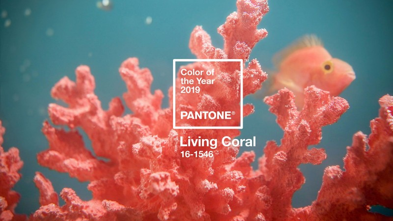 Pantone Color of the Year The Pantone Color of the Year 2019 Is Officially Released pantone color