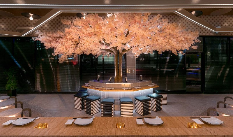 restaurant design Le Blossom: A Japanese Restaurant Design by Ménard Dworkind Le Blossom A Japanese Restaurant Design by M  nard Dworkind 7