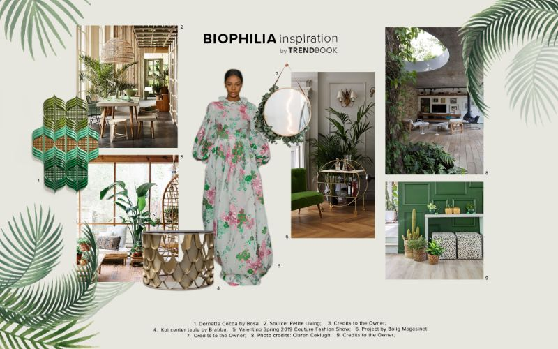 Seeking Connection with Nature - Biophilia Interior Design Trends interior design trends Seeking Connection with Nature – Biophilia Interior Design Trends Seeking Connection with Nature Biophilia Interior Design 4