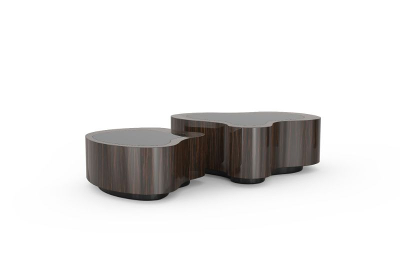 An Alluring Furniture Design, The Curvy Wave Center Table