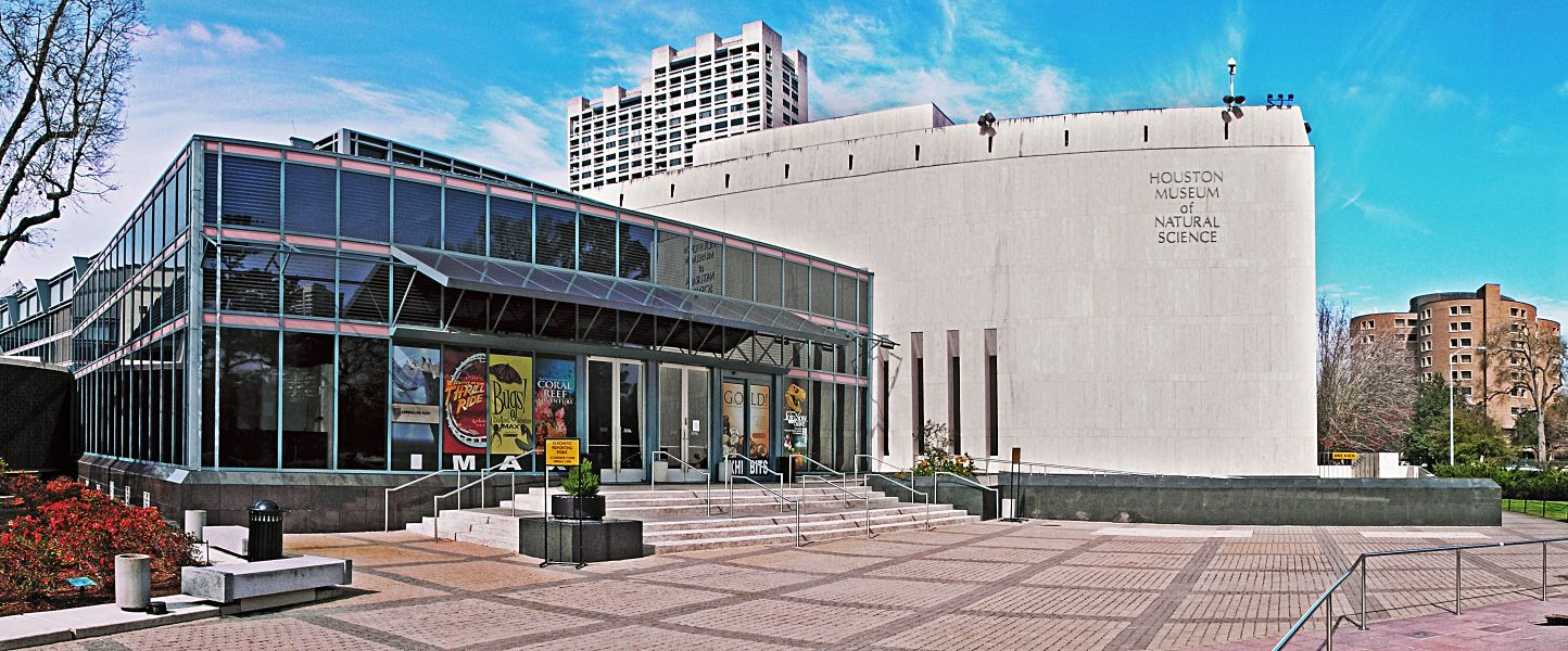 Discover The Best Houston Museums
